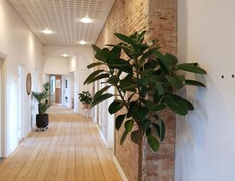 Business center, Århus C, Ny Banegårdsgade