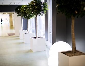Office, Stavanger, Innovasjonspark Stavanger